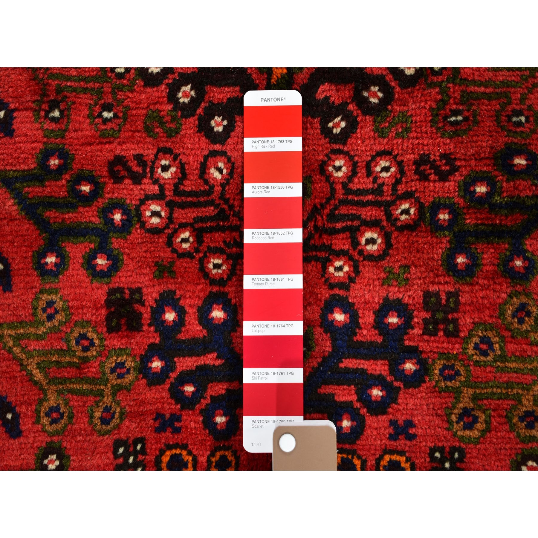 "6'6""x9'8"" Red New Persian Shiraz Full Pile Hand Woven Oriental Rug"